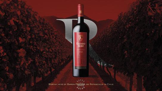 Escudo Rojo vin chilien chili