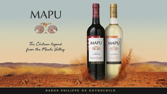 Mapu vin chilien chili