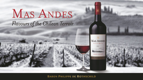 Mas Andes vin chilien chili