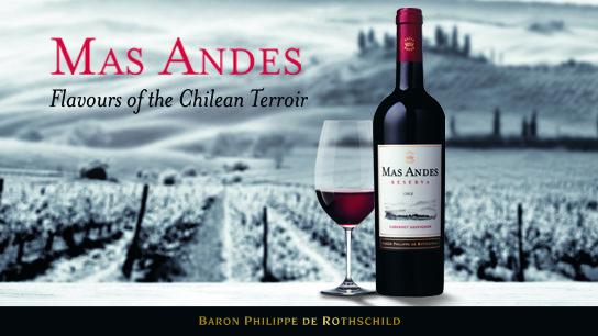 Mas Andes Chilean wine vin chilien chili